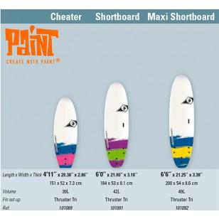 Bic Paint Surfboards